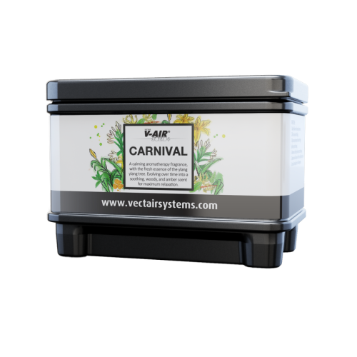 Профессиональный картридж ароматизатор воздуха V-Air Solid Plus Карнивал
