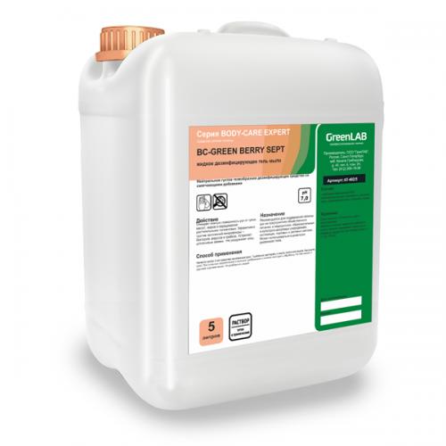 BC - GREEN BERRY SEPT, 5 л. Жидкое дезинфицирующее гель мыло